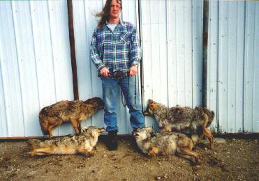 JM w/coyotes (22K) JPEG